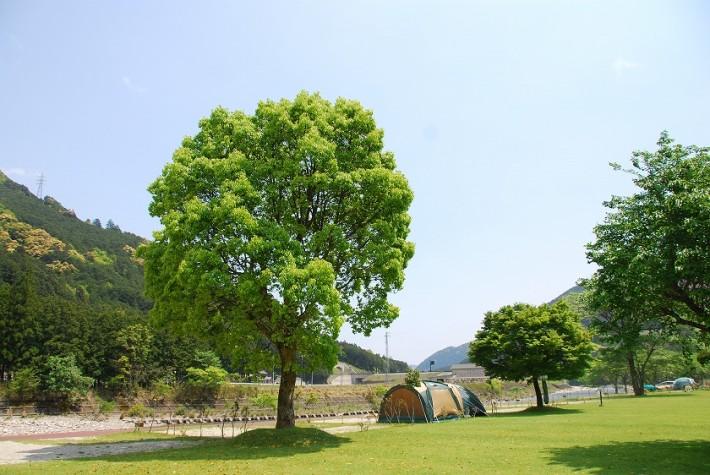 キャンプinn海山20周年アニバーサリーイベント @ キャンプinn海山場内 | 北牟婁郡 | 三重県 | 日本