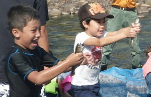 アマゴのつかみどり体験 @ キャンプinn海山前の銚子川浅瀬 | 北牟婁郡 | 三重県 | 日本