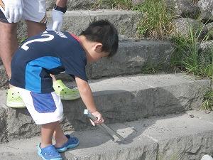 銚子川クリーンクリーンデイ @ キャンプinn海山周辺の河原 | 北牟婁郡 | 三重県 | 日本