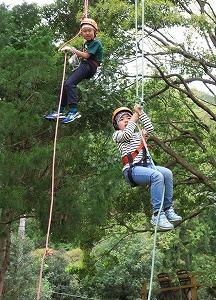 ★中止 ツリーイング~木に登ろう!~ @ キャンプinn海山場内 | 北牟婁郡 | 三重県 | 日本
